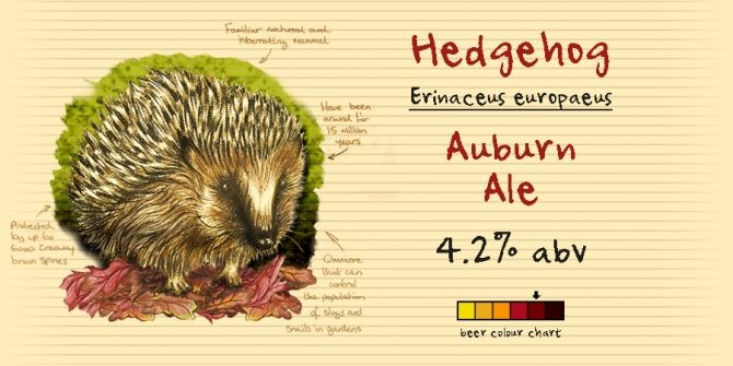 An Auburn Ale with an Autumnal feel.